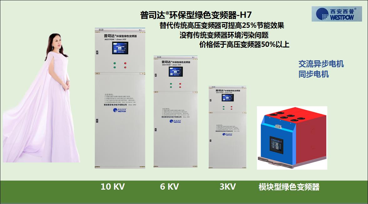 中高压同步电机启动装置-H7